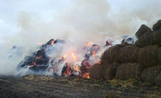 В Тамбовском районе тушили сено